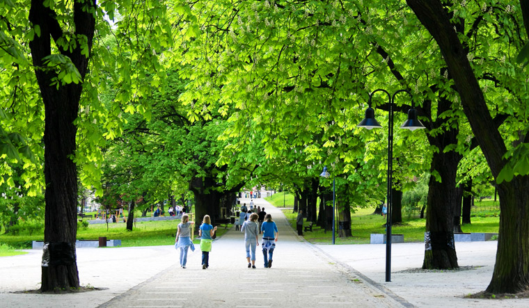 park-greenery-green-space-people-open-air-trees-