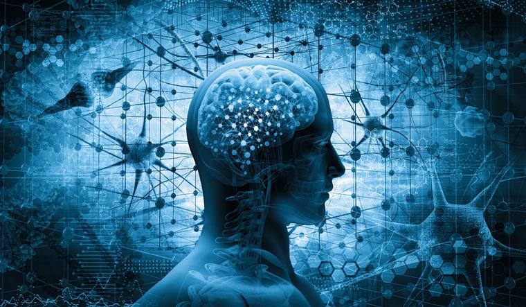 brain-human-think-man