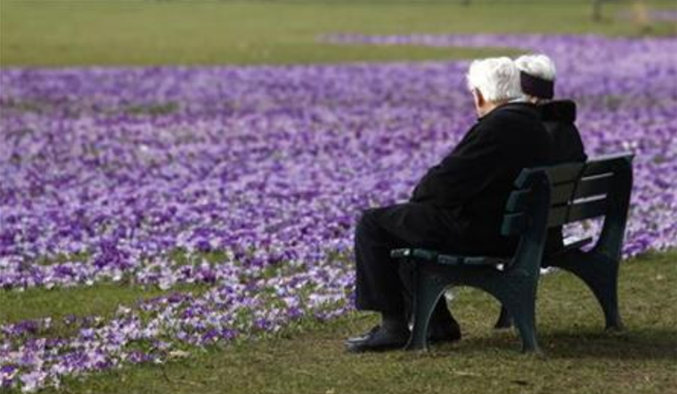 eldery-old-couple-nature-ageing-aging-sitting-reu