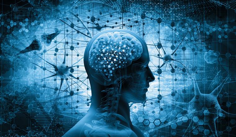 human-brain-brain-thinking-concept-3d-illustration-shutter