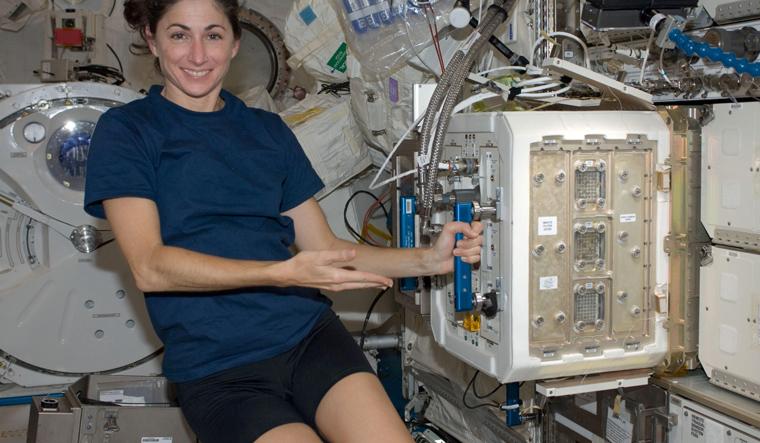Mice studies in space flight may help understand ageing: NASA
