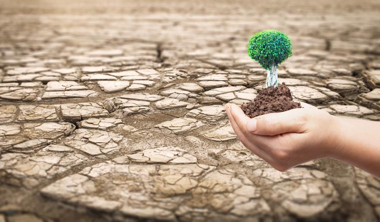 Desertification--land-degradation-neutrality-climate-shut