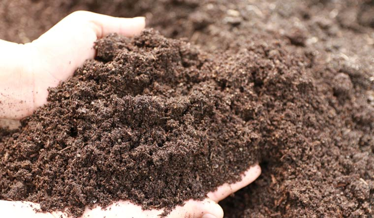 Soil-vegetable-planting--use-our-hands-to-check-the-puffiness-farming-shut