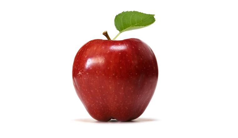 apple--apples-food-fruits-shut