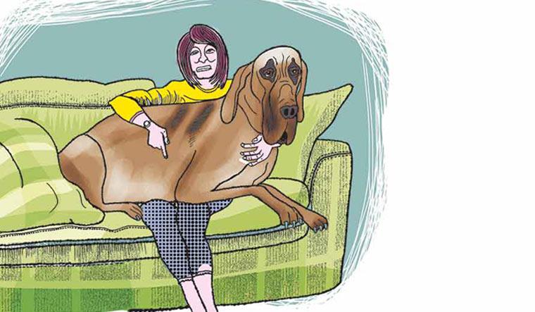 dog-owner-pet-health.