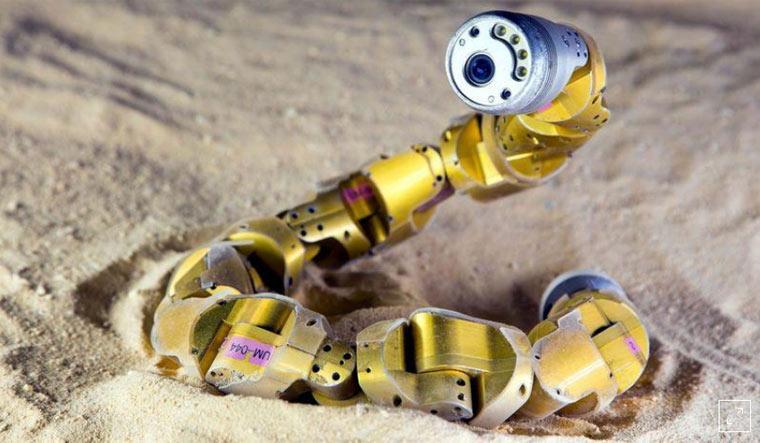 Scientists make snake-like robots that navigates unstructured terrain