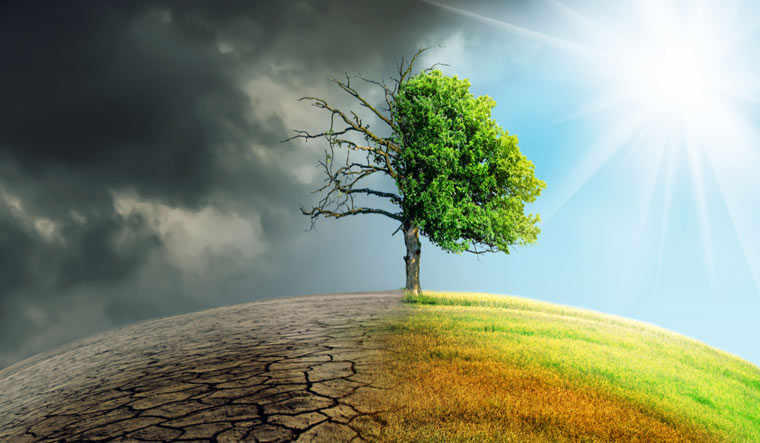 climate-change-global-earth-trees-weather-rain-water-drought-shut