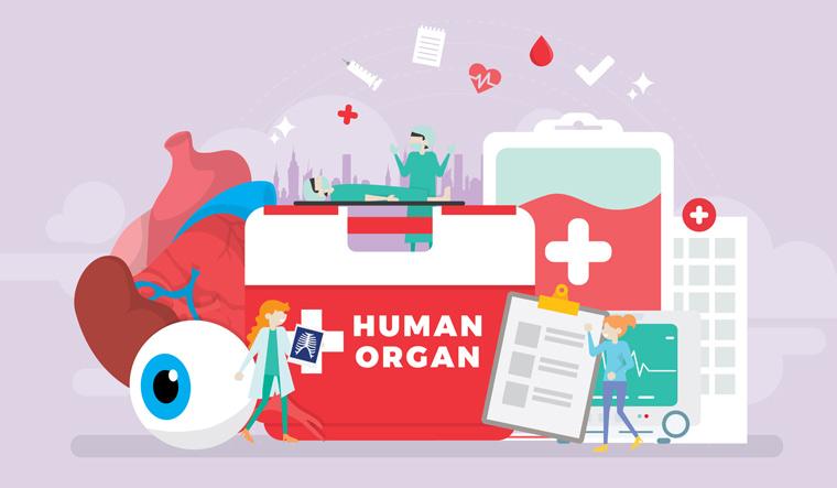 human-organ-donation-heart-doctor-human-organs-shut