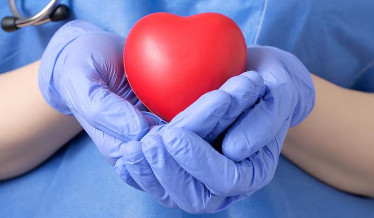 organ-donation-heart-doctor-human-organs-shut