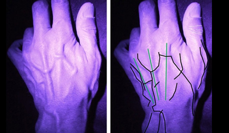 hands-researchers-will-use-vein-patterns-and-knuckle-creases-to-identify-individual-hands-Lancaster--University-PA