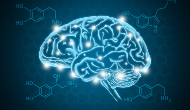 head-human-nerves-body-brain-Serotonin-nerves-shut