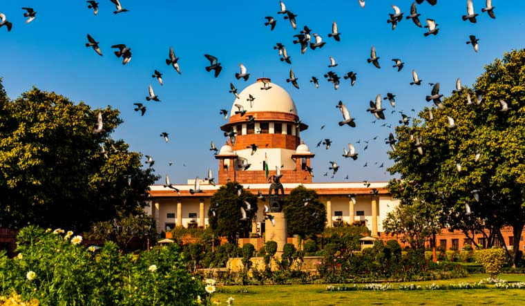 judiciary-apex-court-supreme-court-of-india-law-legal-shut