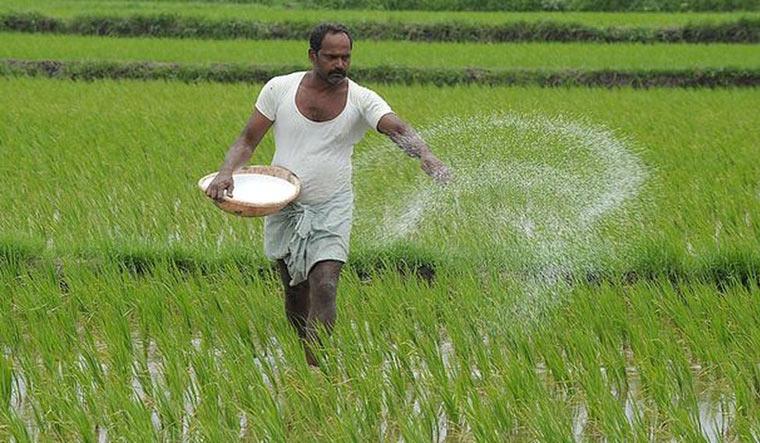 Intensive farming more environment-friendly than organic