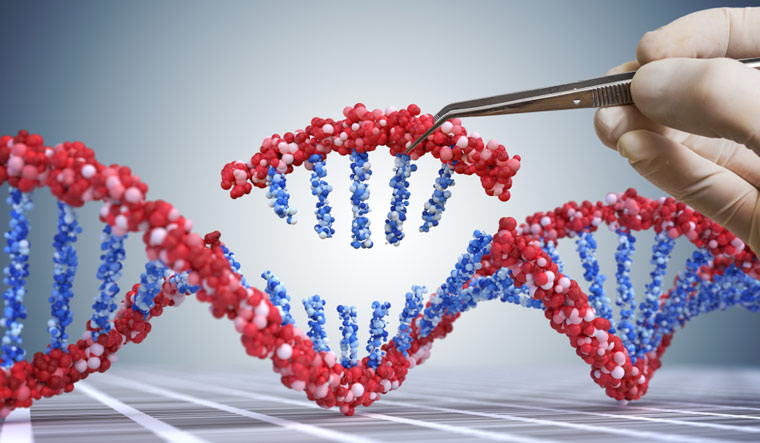 China gene babies' mutation linked to higher mortality