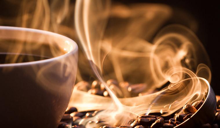 coffee-smell-aroma-power-smell-aroma-smell-brew-sniff-caffeine-shut