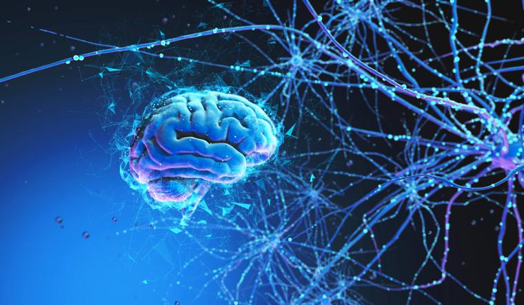 Resultado de imagem para brain new