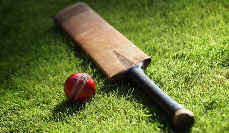 cricket-rep