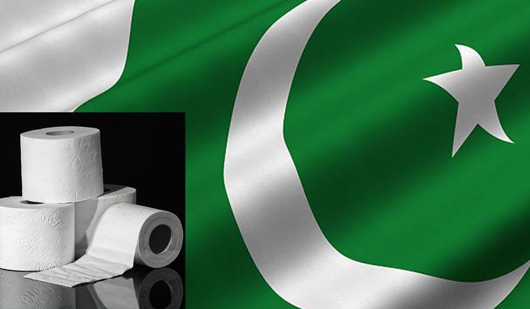 Image result for pakistan flag