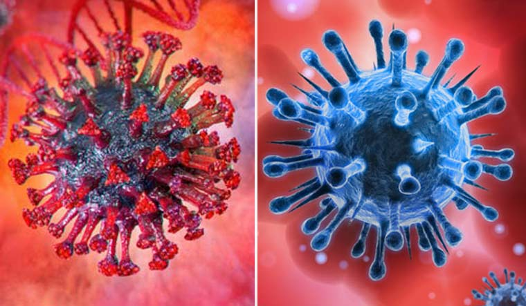 coronavirus-covid-coinfection-variants-shutterstock-collage