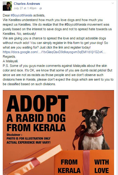 adopt-stray