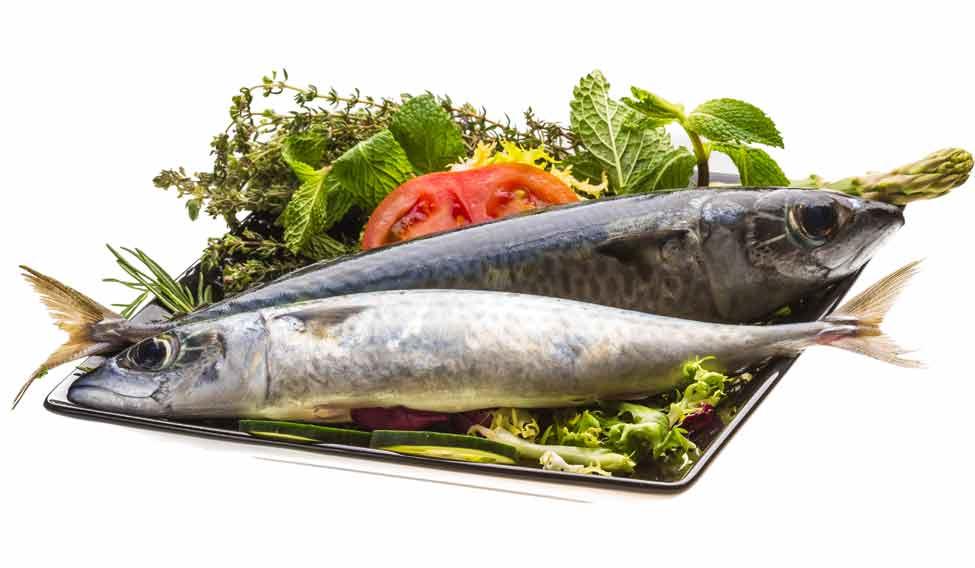 sardine_134188472