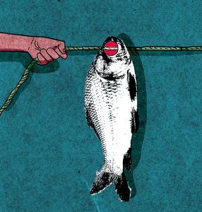 Illustration Bhaskaran