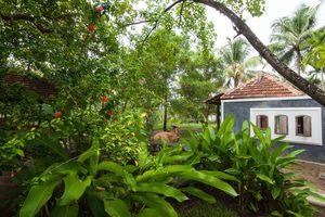 Kayal Island retreat, Kakkathuruthu, Alappuzha