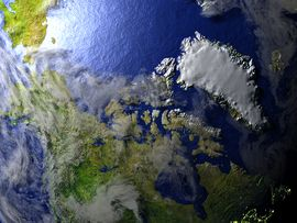 An Illustration of the arctic region