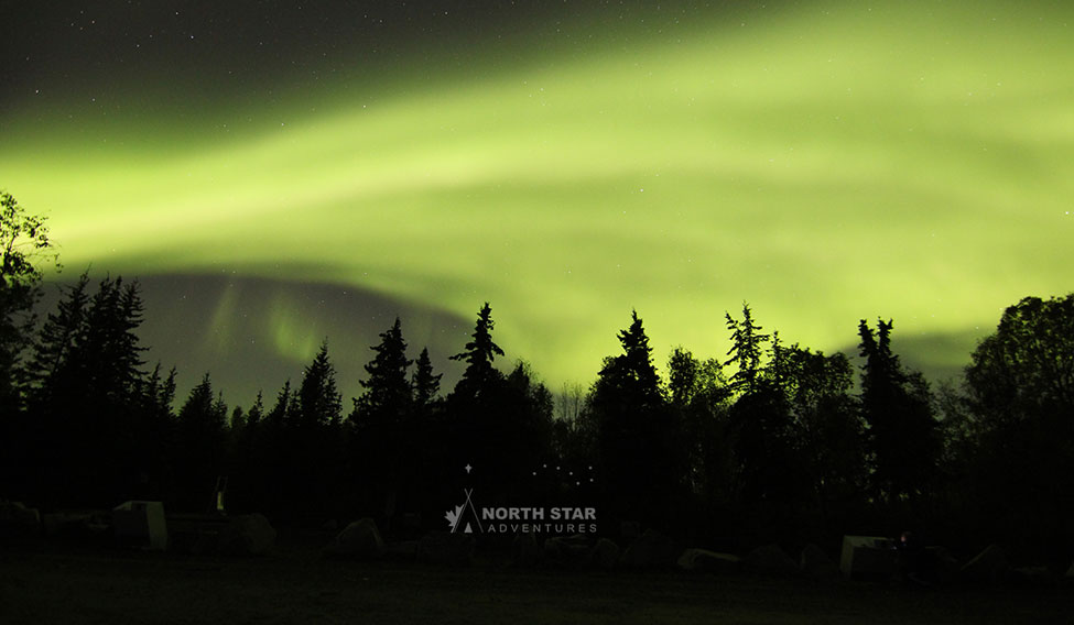 Allure of Northern Lights
